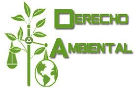 11G DCJ-09 Derecho Ambiental