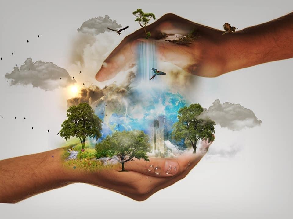 12G MGAP-03 Enfoque Biologico para la Conservación, la Ecología y el Manejo de Vida Silvestre