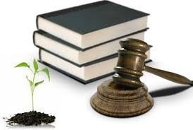 11G MLA-03 Legislación Sobre el Daño Ambiental