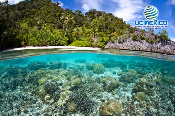 10G MGAP-10 Enfoque Eco sistémico y Áreas Marinas Protegidas