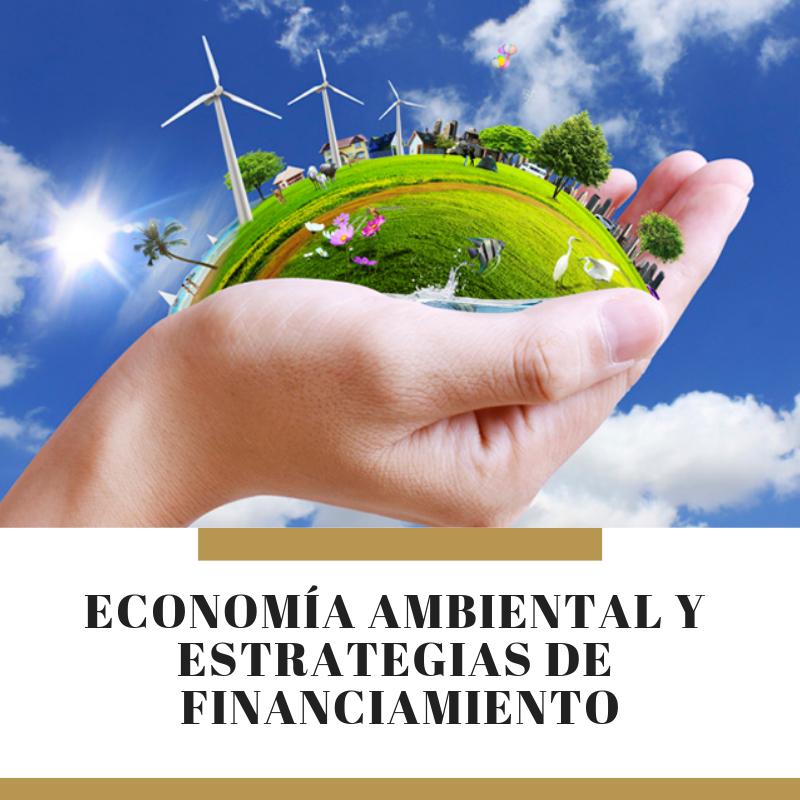 13G MGAP-08 Economía Ambiental y Estrategias de Financiamiento