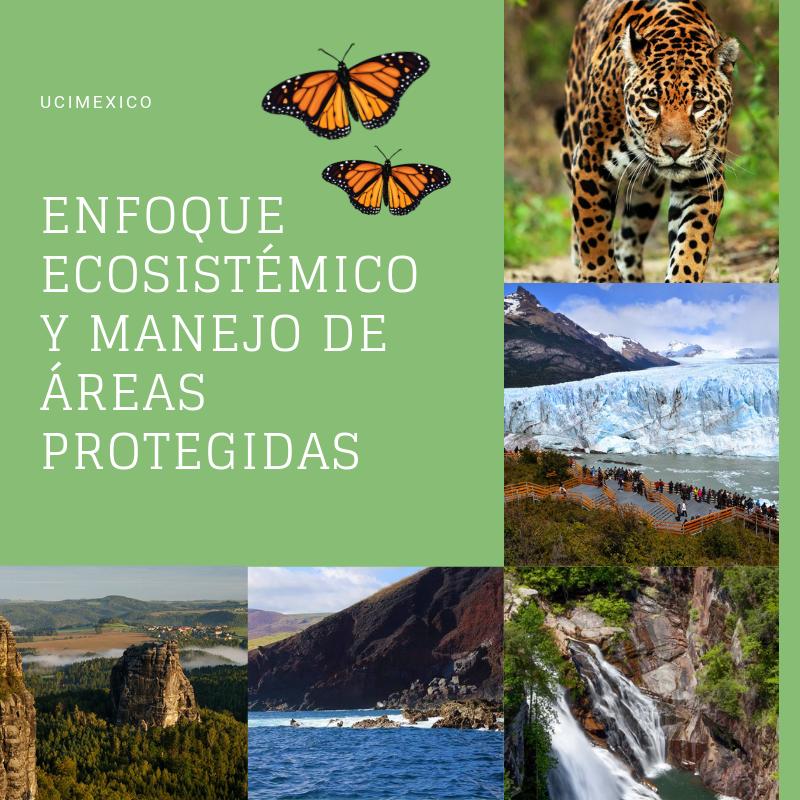 15G MGAP-02 Enfoque Ecosistémico y Manejo de Áreas Protegidas