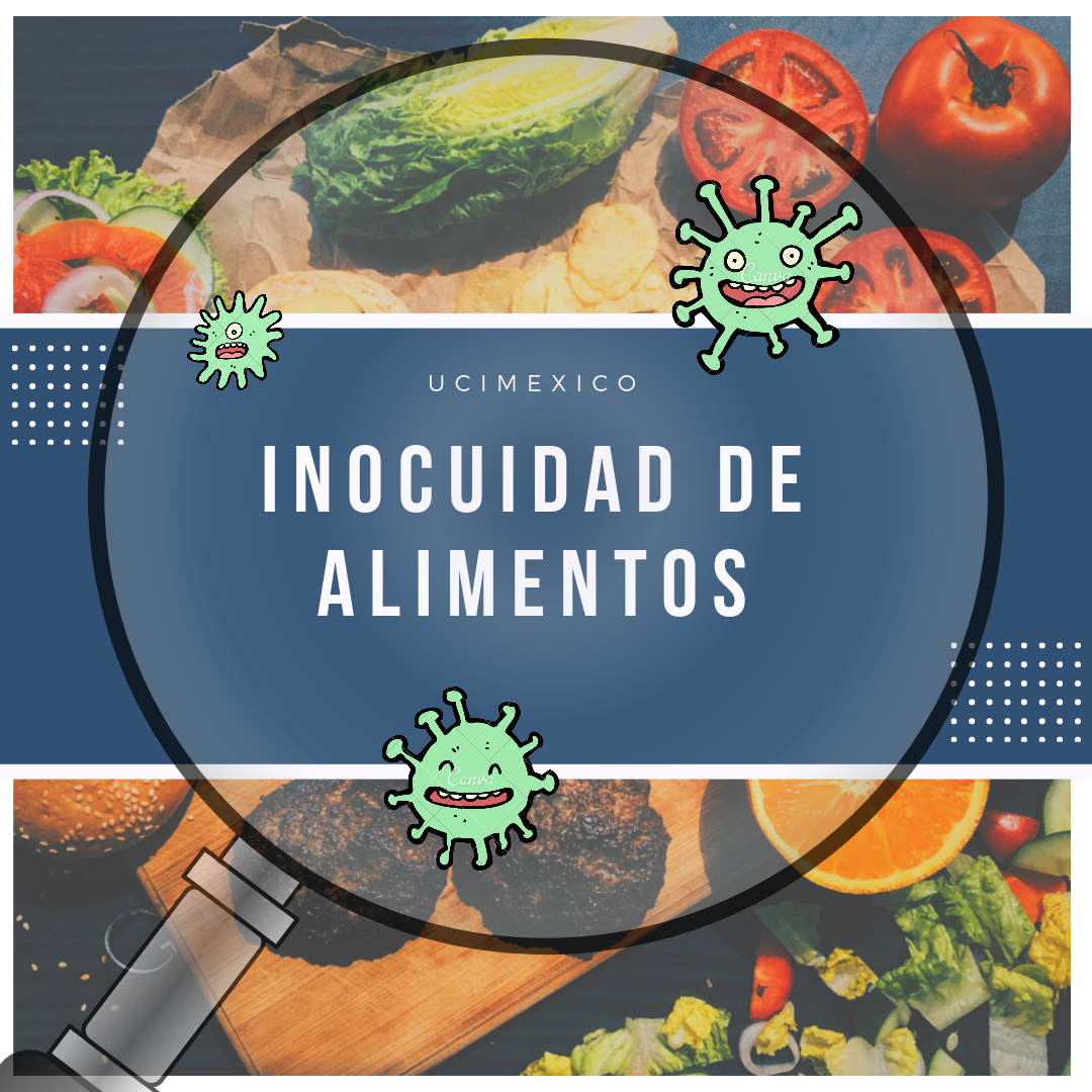 17G MIA-08 Inocuidad de Alimentos II