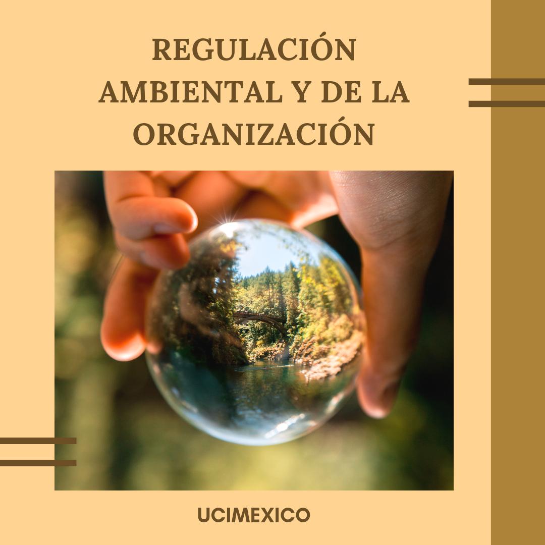 5G MLGA-08 Regulación Ambiental y de la Organización