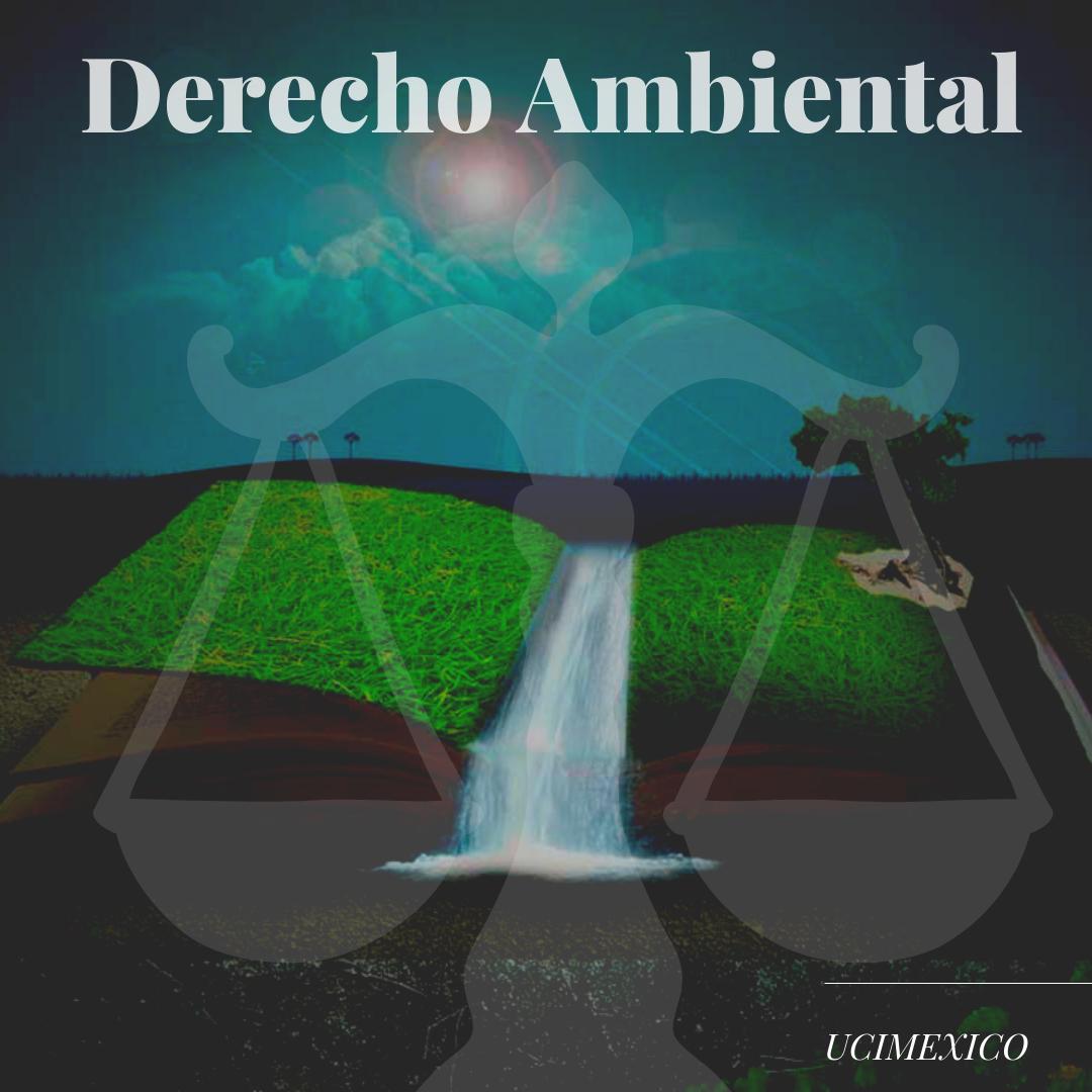 15G DCJ-09 Derecho Ambiental