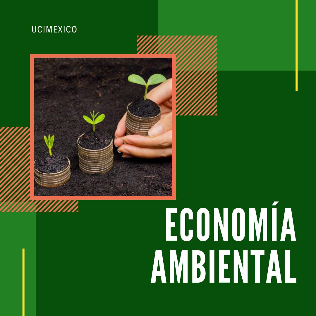 21G DCEA-04 Economía Ambiental