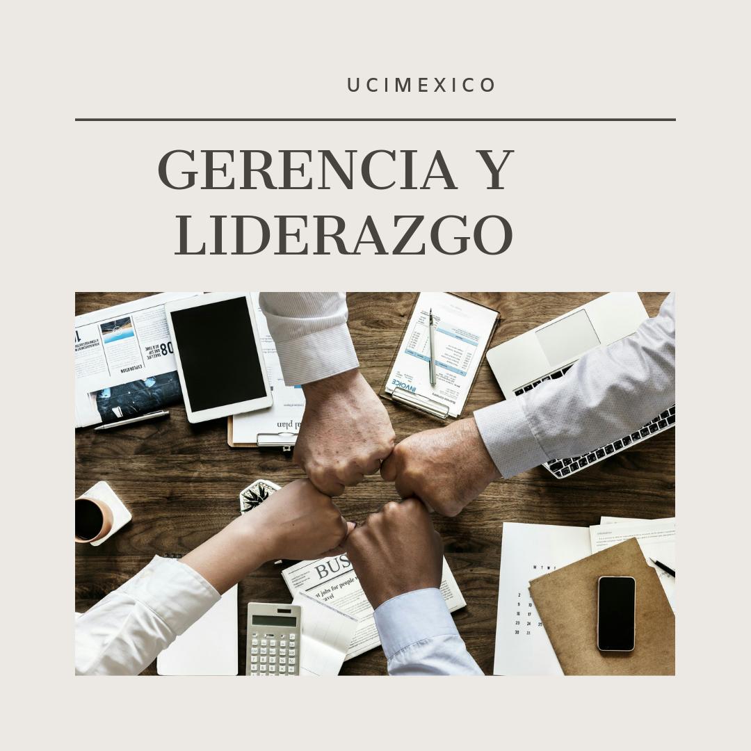 18G MIA-07 Gerencia y Liderazgo