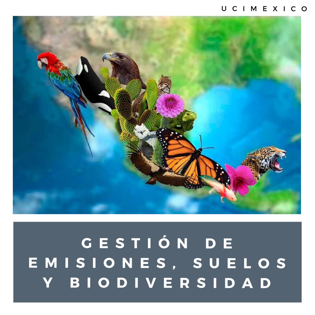 6G MLGA-04 Gestión de Emisiones, Suelos y Biodiversidad