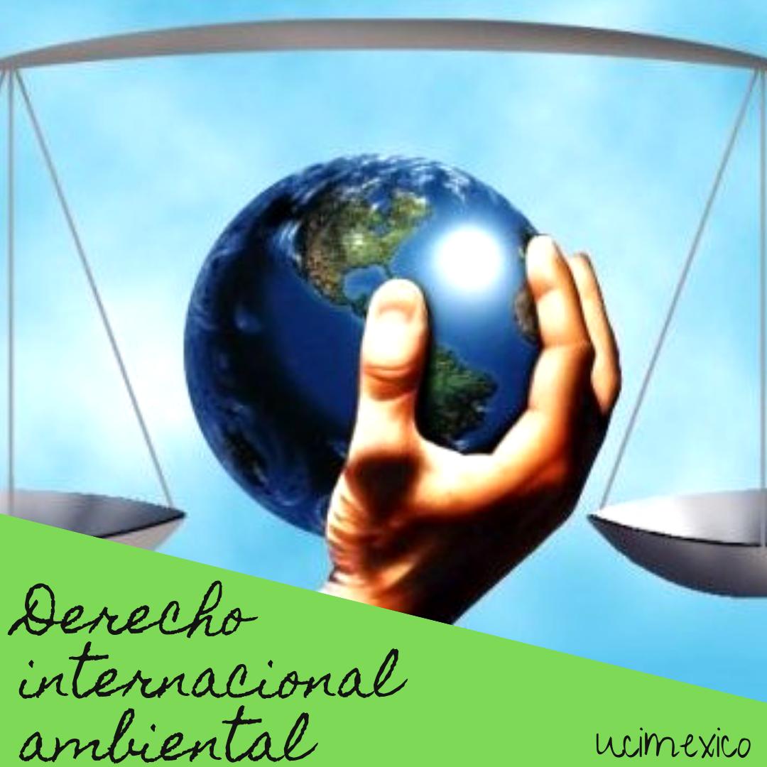 13G MLA-04 Derecho Internacional Ambiental