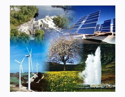11G MGAP-03 Enfoque Biológico para la Conservación, la Ecología y el Manejo de Vida Silvestre