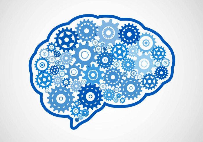 9G MED-06 Teorías del aprendizaje II